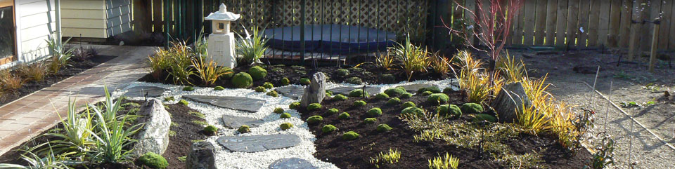 Gardening and landscape company christchurch silver for Garden maintenance christchurch