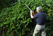 garden maintenance christchurch
